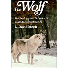 The Wolf: The Ecology and Behaviour of an Endangered Species