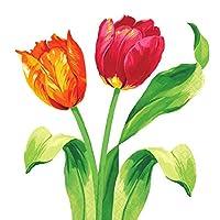 amscam 16 Count Bright Tulips Beverage Napkins, Multicolor