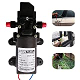 Zology High Pressure Self Priming Diaphragm Water Pump for Car Washing Boat Cleaning