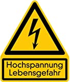 LEMAX® Schild PVC Kombischild Blitz & Hochspannung Lebensgefahr 237x200mm
