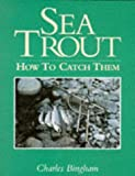 Sea Trout: How to Catch Them