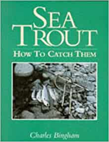 how to catch sea trout