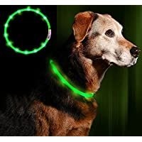 [Gesponsert]Anicoll LED Leuchthalsband Hunde Halsband Grün USB Wiederaufladbar - Längenverstellbarer Haustier Sicherheit Kragen für Hunde und Katzen- 3 Modus 12 Lichte
