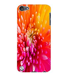 ColourCraft Beautiful Flower Design Back Case Cover for APPLE IPOD TOUCH 5
