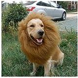 Freefisher Peluca del león peluca del perro traje del animal doméstico Disfraz(M 40*40CM)