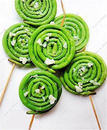 Promotion! Bean long Vigna Unguiculata Graine, Bonsai Plante en pot de fruits et de légumes rares semences jardin Easy Grow 10 pièces / sac