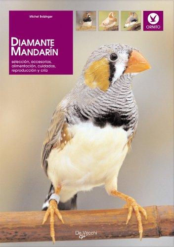 Diamante mandarín (Animales) por Michel Dr. Bolzinguer