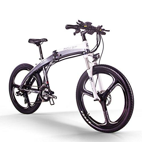 RICH BIT Bicicleta eléctrica, ZDC-880, e-Bike, 250W, 36V, 9.6AH