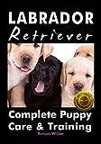 #1: Labrador Retriever: Complete Puppy Care & Training