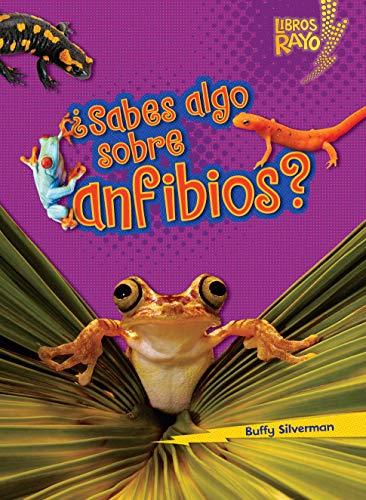 ¿sabes Algo Sobre Anfibios? (Do You Know about Amphibians?) (Libros Rayo — Conoce los grupos de animales / Meet the Animal Groups) por Buffy Silverman