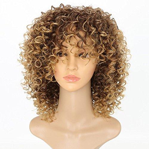 Synthetische Perücken für Frauen lose Locken mit Fransen Full Perücken Maschine Made kurz gelockt Haar Ombre 2Ton Farbe Braun bis blond 35,6cm (Locken-maschine)