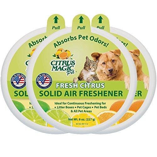 Citrus Magic Pet Geruch Stoßdämpfender massiv Lufterfrischer, 3Stück, 8-Ounces je
