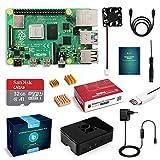 LABISTS Raspberry Pi 4 Model B 2GB RAM Starter Kit, RPi Barebone con MicroSD 32GB, Tipo C Alimentatore 5.1V 3A, Ventola, Micro HDMI, Lettore di Scheda e Custodia Protettiva Nera