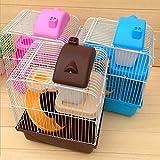 Generic yc-uk2–160104–129< 1& 5869* 1>: Randomet 2S roditori gabbia Hot criceto 2piani livelli Floor Gerbil mouse Water Bottle Wheel color: random Hot Hamster