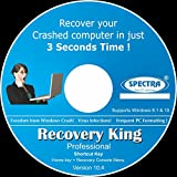 Spectra Recovery King Professional Softw...