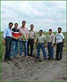 Aloe Vera Premium Bio Direktsaft – Handfiletiert - 4