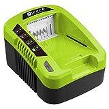 Zipper - Chargeur de batterie 40 V 100 W - ZI-LGR40V-AKKU - Zipper