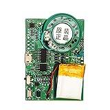 VBESTLIFE USB Musik Sound Digitaler Sprachaufzeichnung Player Chip Recorder Modul 0.5W mit wiederaufladbarer Lithium-Batterie für DIY-Karten/Spielzeug