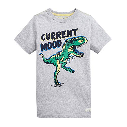 joules Ben Boys Short Sleeve T-Shirt Age 9-10 Grey Dino - Ben Short Sleeve T-shirt