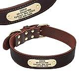 Berry Hundehalsband aus echtem Leder, mit ID-Tags, für mittelgroße und große Hunde