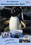 DVD Cover 'Antarktis & Pinguine erleben