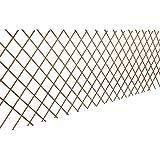 vidaXL 5x Treillis Oiser Extensible Treillis pour Rosiers Plantes Grimpantes
