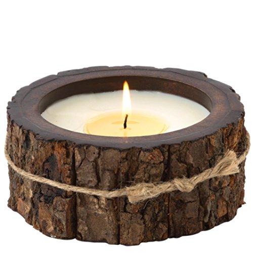 Himalayan candeline al pompelmo, corteccia, albero di