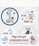 Meilenstein-Sticker - BabyGlück - Babys erstes Jahr (blau): 20 Meilenstein-Sticker für die schönsten Erinnerungsfotos