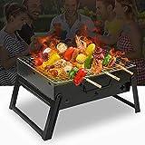 DlandHome BBQ Barbecue à Charbon Pliable et Portable et Barbecue de Table sans Fumée en Acier Inoxydable à l'Extérieur de Jardin extérieur Camping et Pique Nique (35 * 27 * 20cm)