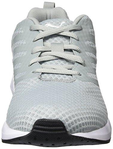 Puma Flare Mesh, Chaussures De Course Pour Homme Grey (grau (carrière-puma White 03))