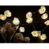 Rose Love Elegant LED String Lights 3 Meter 30 Roses Warm White Colour With Set Of 3 Battery String Diwali Wedding Decoration Special Home Decoration Gifts Rice Quirky Copper Wire Lights By Glimmer Lightings