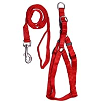 """PETHUB Quality Product P.P Harness/Leash 1/2"""" INCHES RED"""