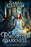 Forgotten Darkness (The Shadow Demons Saga Book 8)