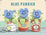 3 Blue Pansies Flowers Old Vintage Retro for Kitchen, Shed, Garden or Allotment Medium Metal/Steel Wall Sign