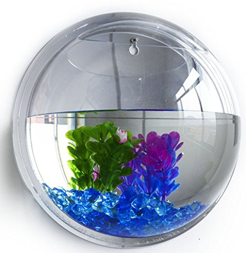 support-mural-pour-vase-aquarium-fleur-plante-aquarium-reservoir-decoration-de-la-maison-transparent