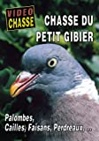 Chasse du petit gibier : Palombes, Cailles, Faisans, Perdreaux... - Vidéo Chasse - Chasse du petit gibier