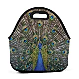 The Peacock Spreading Its Tail Portable Lunch Bags,Reusable Picnic Bag -for Adults, Women, Girls, School Children - Suitable for Travel, Picnic, Office (Small)