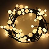 Waterproof Globe String Lights, Neolight 6.56ft 2M 60 LED Fairy Lights Decorative Lighting for Home, Bedroom, Garden, Wedding, Christmas Party (Warm White)