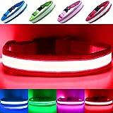 PetSol USB Rechargeable LED Collar (Klein (30cm - 40cm / 11.8