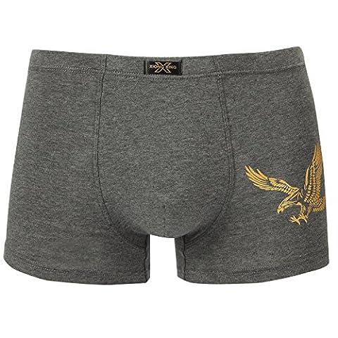 XUE SHI Sous-vêtements homme 2-PACK Boxer Confortable (XXXL, 6226)