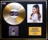 ARIANA GRANDE/Goldene Schallplatte/RECORD & Foto-Darstellung/Limitierte Edition/COA/MY EVERYTHING