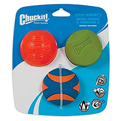 Chuckit! Fetch Medley 2 Pet Toy Balls, Medium from Chuckit!