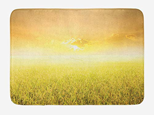 NasNew Doormats Yellow Bath Mat, Rice Field Farm and Sunset Countryside Agriculture Sun Rays Evening Cloudscape, Plush Bathroom Decor Mat with Non Slip Backing, 23.6 W X 15.7 W Inches, Yellow Beige