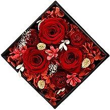Roses D'équateur Vivent Jardinière/ Valentine-A