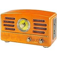 Hyundai 8592417008158 Radio portable Marron