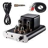 Little Dot MK III Vorverstärker für Lautsprecher und Kopfhörer
