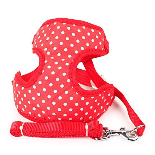 Kamiwwso Hundeleine für kleine Hunde, mittelgroß, gepunktet, weicher und Leichter Körper,...