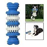 Itian Hund Chew Spielzeug,Hund Gummi Chew Knochen Spielzeug Dental Treat für Kauen und Spielen (blau)