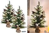 Britesta Weihnachtsbaum Batterie: 2er-Set Deko-Weihnachtsbäume mit 30 LEDs, Zapfen & Eibenbeeren, 60 cm (Kleiner LED-Weihnachtsbaum)