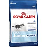 Royal Canin Hundefutter Maxi Junior Active 15 kg, 1er Pack (1 x 15 kg)